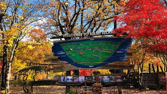 Nami Island and Petite France with The Garden of Morning Calm One Day Tour