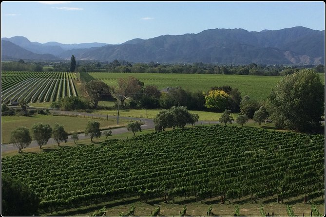 Private Wine Gourmet and Scenic Delights Tour from Picton