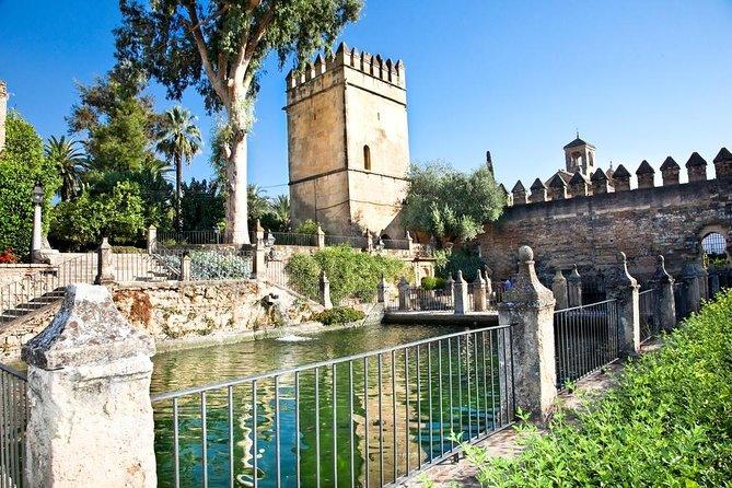 Cordoba Walking Tour with Arabian Baths Experience