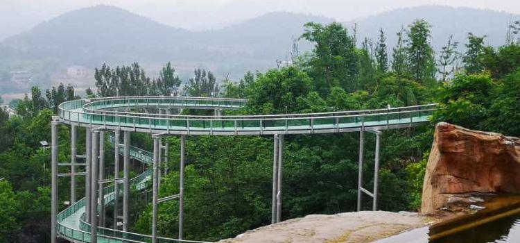 太乙仙山植物園2