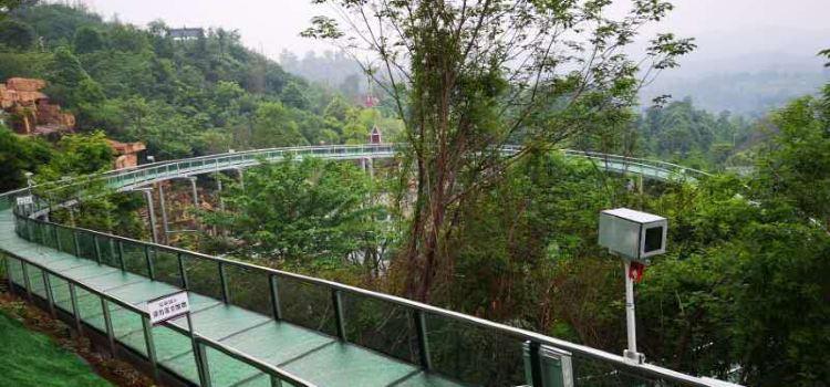 太乙仙山植物園