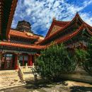 Beijing Half Day Private Tour: Temple of Heaven and Summer Palace