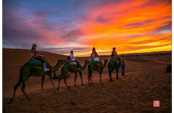 摩洛哥撒哈拉沙漠大環線八日遊(酒店接送+中文導遊+2人即可成團)