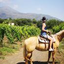 Pompei Ruins & Horseback riding on Vesuvius with Lunch!