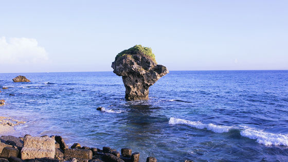 【專車帶你認識小琉球】小琉球半潛艇海底觀光一日遊