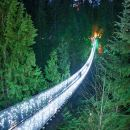 Vancouver City Sightseeing Tour: Capilano Suspension Bridge & Vancouver Lookout