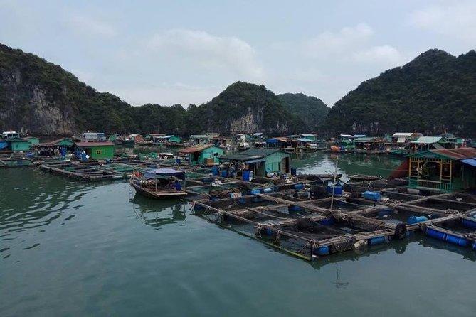 2 Days Ha Noi Cat Ba Lan Ha Bay on Emerald Cruise Premium depart from Ha Noi