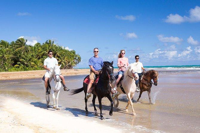 Luquillo Beach Horse Ride from Carabalí Rainforest Adventure Park