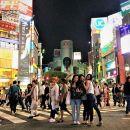 Harajuku and Shibuya Evening Walking Tour