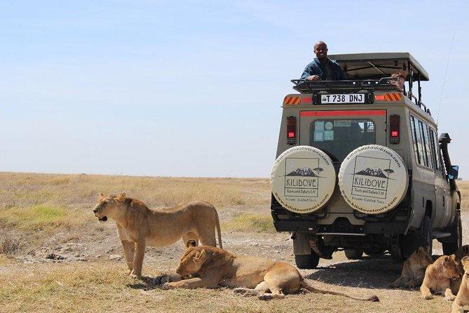 5Days Best of Tanzania Safari
