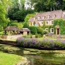 Lunch in the Cotswolds Tour from London