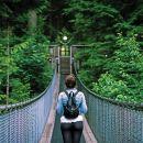 North Shore Day Trip from Vancouver: Capilano Suspension Bridge & Grouse Mtn