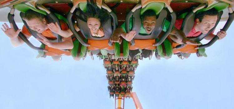 Six Flags Magic Mountain Theme Park2