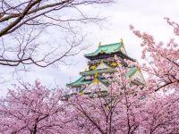 2020日本櫻花開花預測及飯店住宿推薦