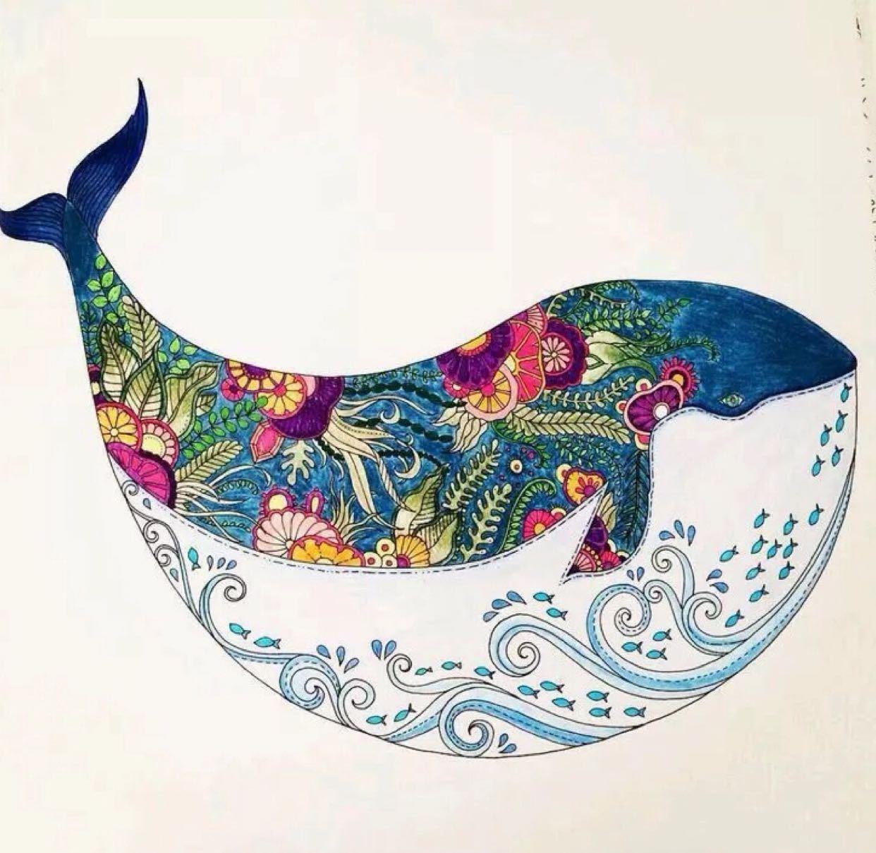 化作孤岛de鲸