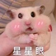 猪猪吃不胖