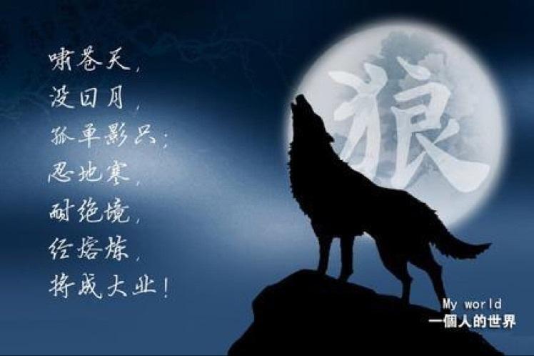 -苍狼??