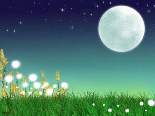 j十五的月亮