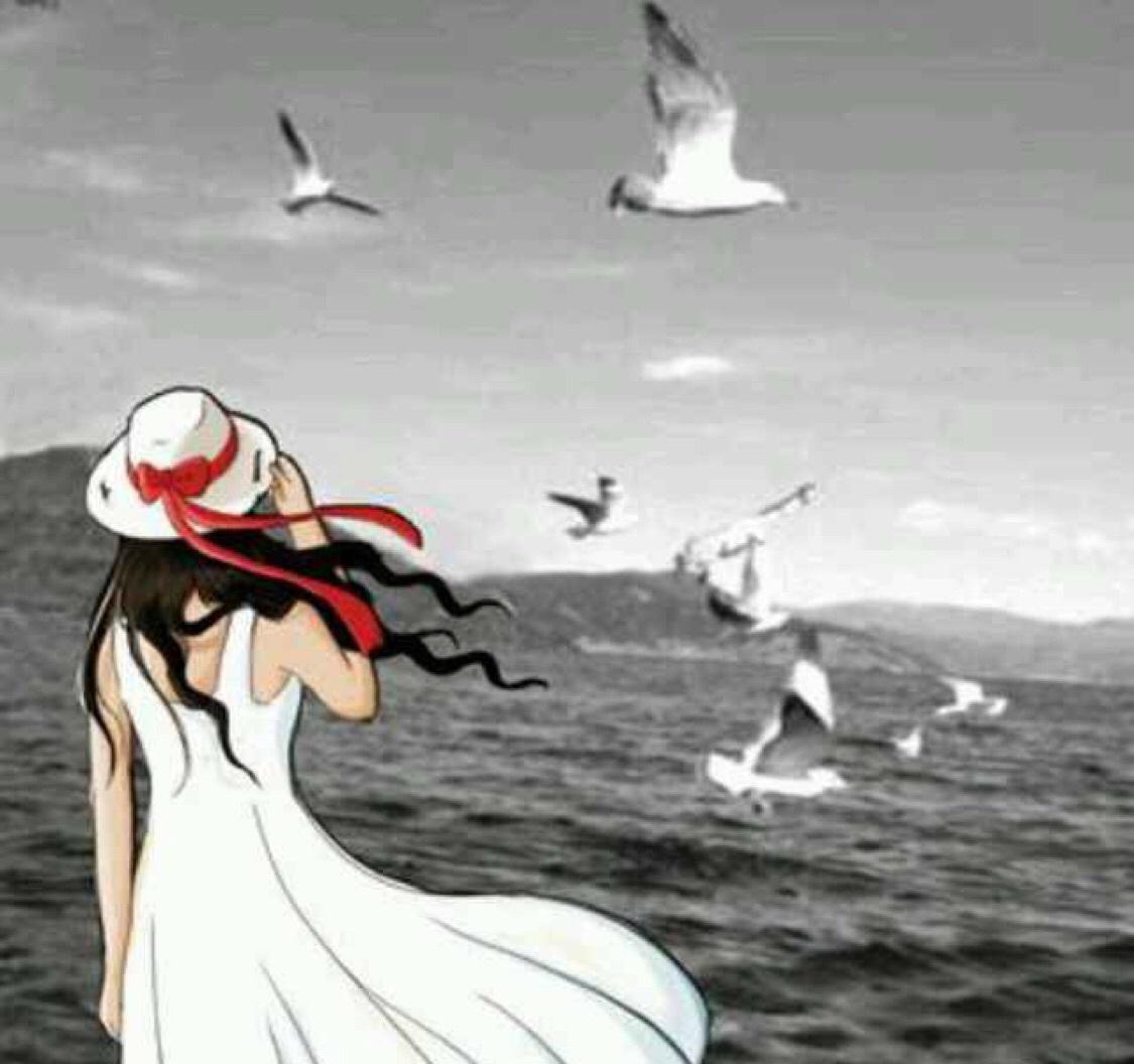 Seagull YL