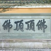 wzy0626