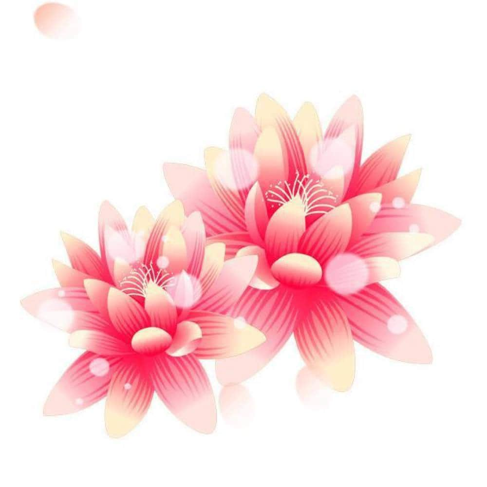 lotus_xu