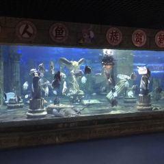 Zhangjiagang Dream Ocean Kingdom User Photo