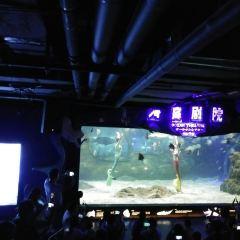 Zunyi Ocean World User Photo