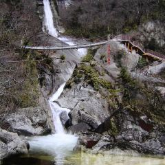 Yunwu Mountain Scenic Area User Photo