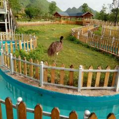 Forest Star Eco Holiday Park User Photo