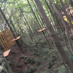 성천농장 여행 사진