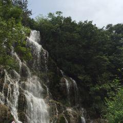 綠林山用戶圖片