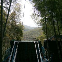 저둥대나무관광지 여행 사진