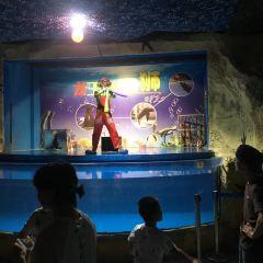 첸다오호 해양관 여행 사진