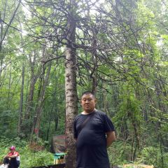 Huazi Mountain Forest Park User Photo