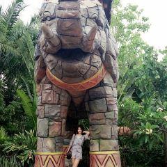 Wanda Xishuangbanna International Resort User Photo