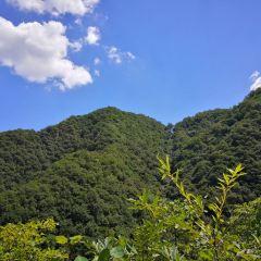 중도구 풍경명승구 여행 사진