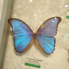 신마왕국 테마공원 여행 사진