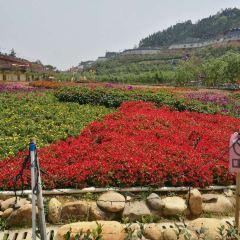 Huahai Happy World User Photo
