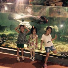 蚌埠海貝海洋樂園用戶圖片