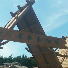 북방(베이팡) 삼림동물원 여행 사진
