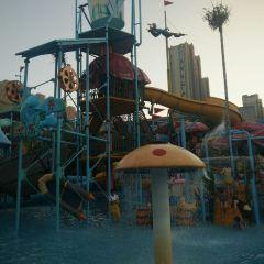 阿酋灣水上樂園用戶圖片