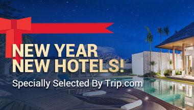 Trip.com Singapore - Cheap Flights, Hotels, Train Tickets