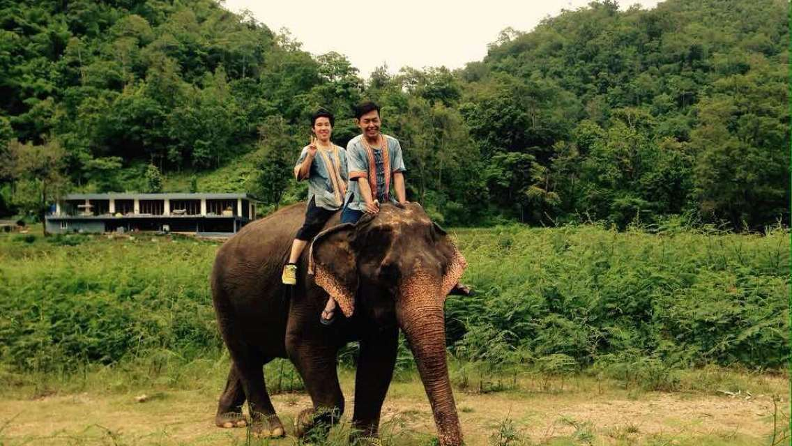 1-Day Jungle Elephant Ride Tour in Thappraya Village