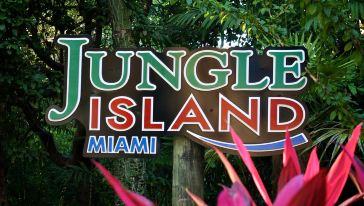 迈阿密丛林岛1