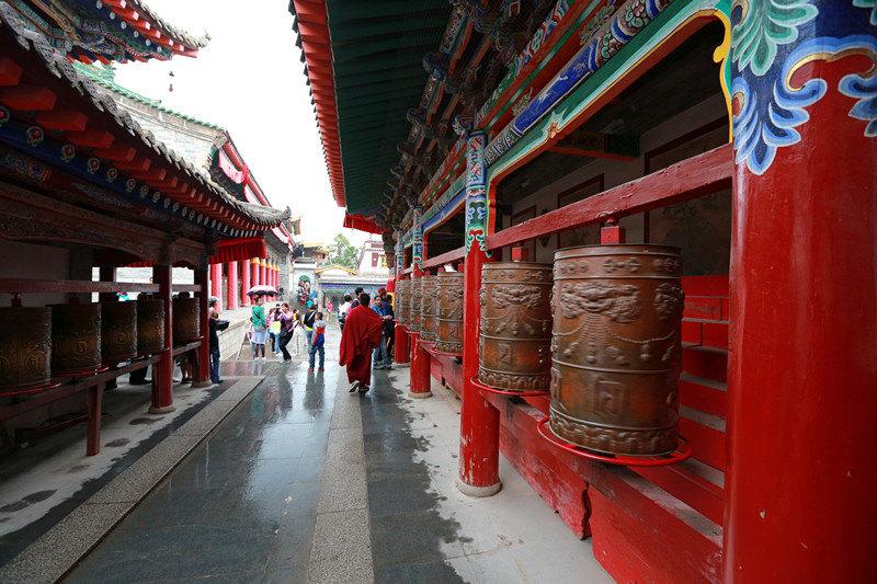 西寧塔爾寺+黃南坎布拉國家森林公園一日遊