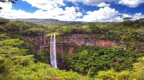 七色之旅_毛里求斯海豚湾+七色土+卡塞拉自然公园一日游【毛里求斯西部