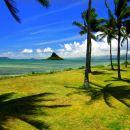 Honolulu Pineapple Plantation in Honolulu+ Sunset Beach + Mokolii Day Tour (Classic Route, Leisure Island Round Tour, Featured Sweet Shrimp Option)