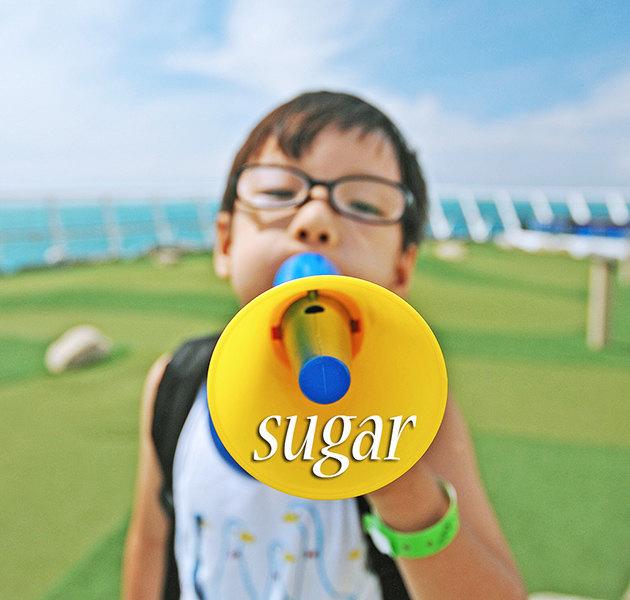 sugar的漫游时光