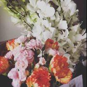 孵蛋星人poemflower