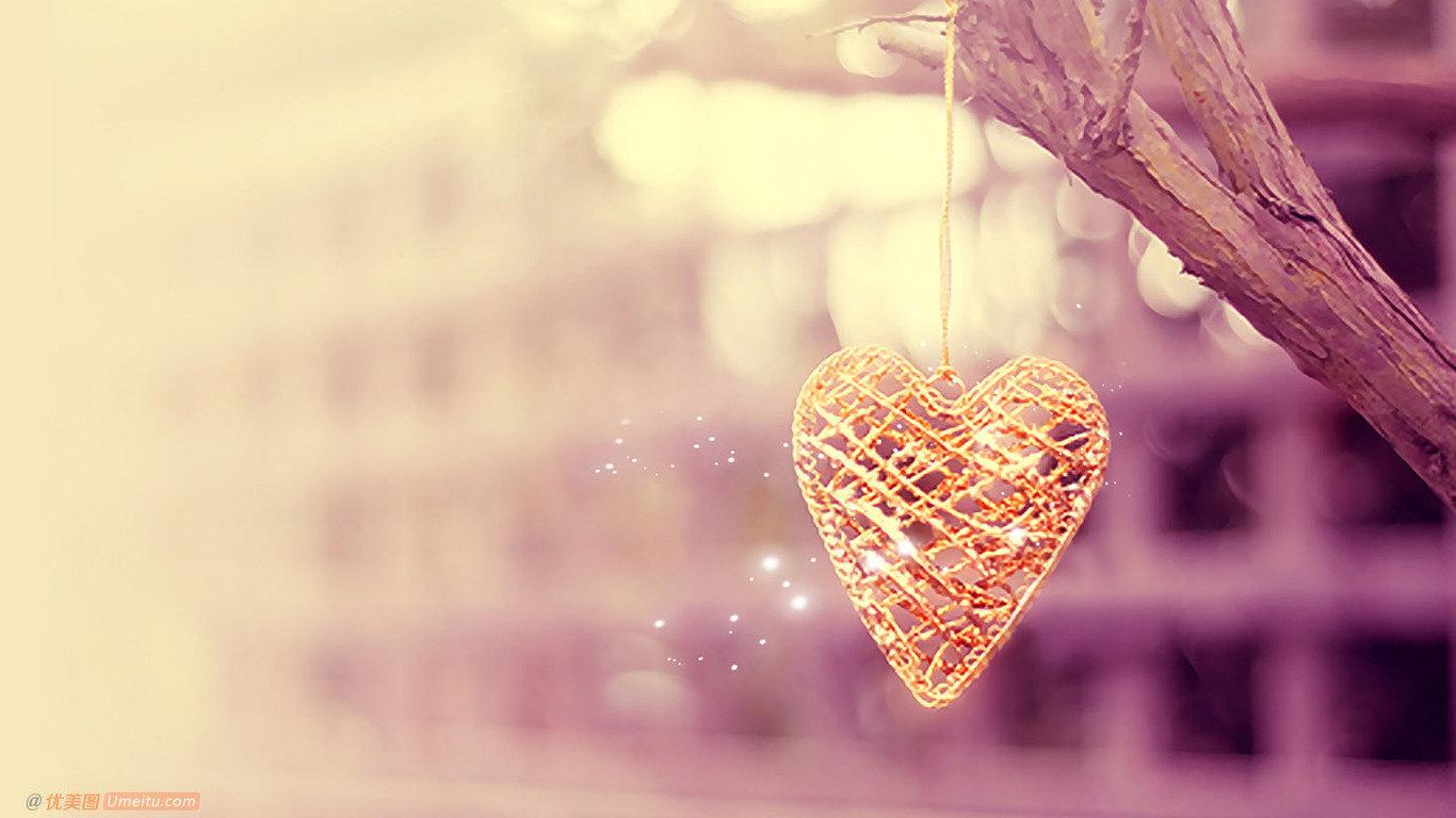 雨后的爱情